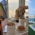 1度は行きたい観光にピッタリの韓国釜山のインスタ映えスポット8選