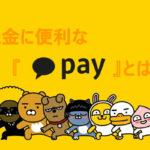 外国人(日本人)は登録できない?送金に便利なカカオペイについて紹介!