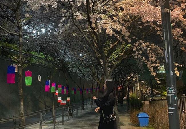 韓国旅行春のコーデ