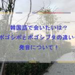 韓国語で会いたいは?ポゴシポとポゴシプタの違いや発音について!